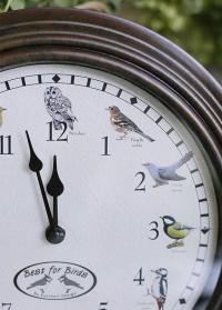 Настенные часы с птицами FB416 Esschert Design фото