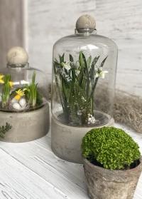 Керамическое кашпо для цветов со стеклянным колпаком AGG44 Esschert Design фото