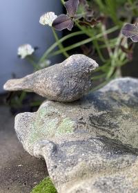Садовая купальня для птиц Aged Ceramic AC138 Esschert Design фото