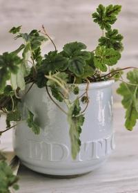 Керамическое кашпо для цветов Belinda от Lene Bjerre фото