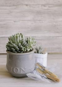 Керамическое кашпо в скандинавском стиле для комнатных растений Belinda Lene Bjerre фото