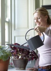 Лейка для комнатных растений 1.7 литра Sophie Conran фото.jpg