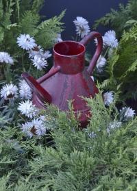 Лейка садовая декоративная винтажная TG238 Esschert Design картинка.jpg