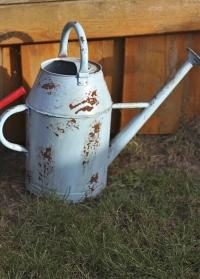 Лейка  садовая 8,5 литров Esschert Design фото.jpg