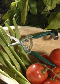 Ножницы для фруктов и овощей фото.jpg
