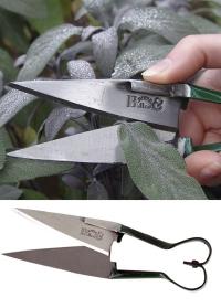 ножницы миниатюрные для срезки трав фото.jpg