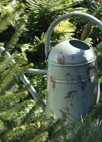 Лейка садовая для цветов Vintage Blue Esschert Design TG239 фото.jpg