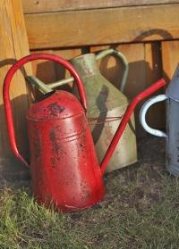 Лейка садовая старинная Esschert Design TG239 фото.jpg