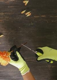 Перчатки флористические с латексом Florabrite Burgon & Ball картинка.jpg