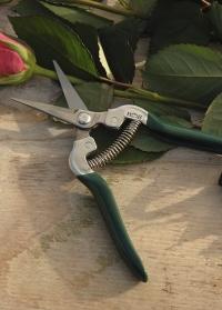 Ножницы флористические для цветов Burgon & Ball картинка.jpg