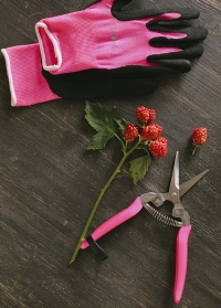Ножницы для цветов флуоресцентные Burgon and Ball фото.jpg