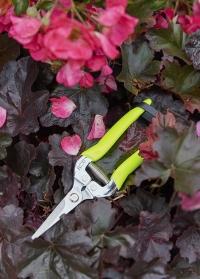 Ножницы для цветов флуоресцентные Florabrite Burgon and Ball фото.jpg