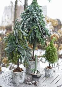 Кашпо для цветов бетонное с имитацией березовой коры отлично подходит для елки Burgon & Ball фото