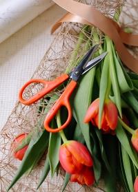 Японские ножницы для флориста и рукоделия Florist NS-170E Chikamasa фото.jpg