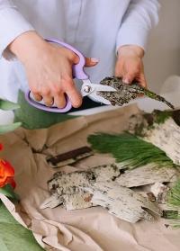 Японские ножницы флористические Florist MF-9000V Chikamasa фото