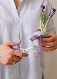 Японские ножницы для цветов и творчества Florist CRI-360SFV Chikamasa фото.jpg