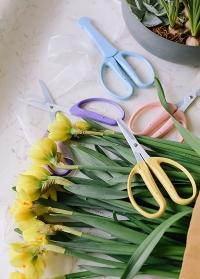 Ножницы флористические для цветов и крафта Florist CRI-360SFY Chikamasa фото.jpg