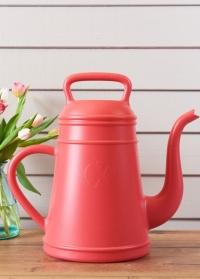 Лейка кофейник дизайнерская для цветов Lungo Xala фото.jpg