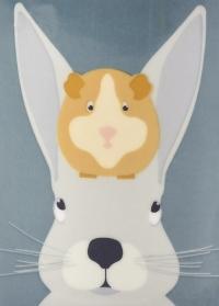 Емкость для корма животных Rabbit Tin Burgon Ball фото.jpg