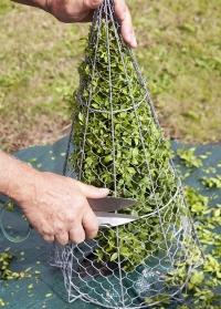 Английские садовые ножницы для топиариев - стрижки растений Burgon & Ball фото.jpg