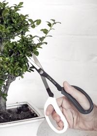 Ножницы для бонсай Burgon & Ball фото