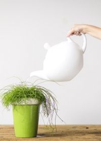 Лейка для полива цветов чайник TG262 Esschert Design фото