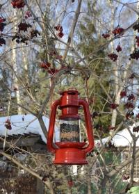 Кормушка для птиц свечной фонарь FB419 Esschert Design фото.jpg