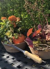 Инструменты для контейнерных растений RHS Container Gardening Burgon & Ball фото.jpg