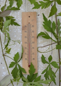 Термометр из бамбука для помещения AJS Blackfox фото.jpg