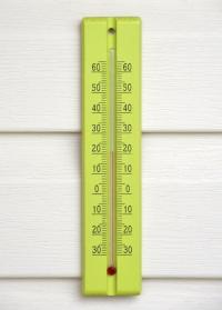 Термометр деревянный для дома и улицы Anis 40008 Blackfox фото.jpg