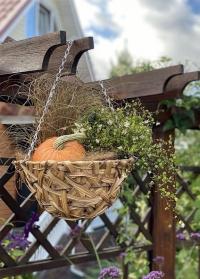 Кашпо подвесное для уличных растений из искусственного ротанга 7 литров Deco Smart Garden фото