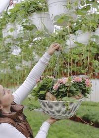 Подвесное цветочное кашпо из искусственного ротанга 7 литров Seashell Smart Garden фото