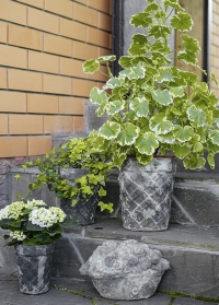 Коллекция винтажных садовых декоров из состаренной керамики Aged Ceramic AC147 от Esschert Design фото