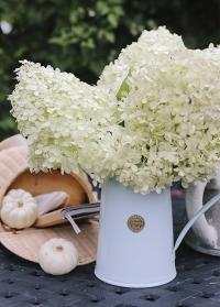 Кувшин-ваза для цветов Classic Duck Egg Blue 9222-DEB Haws фото