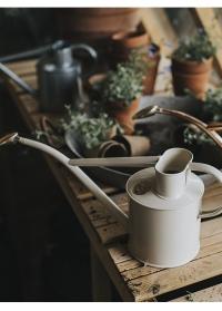 Лейка английская металлическая 1 л. Rowley Ripple Cream от Haws фото