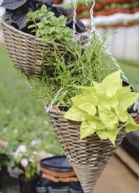 Плетеное кашпо-конус из искусственного ротанга для уличных растений Milano Faux Rattan от Smart Garden картинка