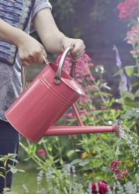 Металлическая лейка для полива растений 4.5 л. Coral Pink Smart Garden фото