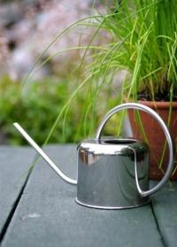 Лейка металлическая для комнатных растений 1 л. Esschert Design
