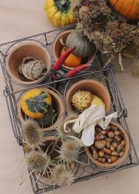 Горшки для цветов из состаренной терракоты в металлической корзинке AT13 Esschert Design фото