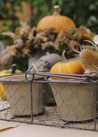 Терракотовые горшки для цветов в металлической корзинке AT12 Esschert Design фото