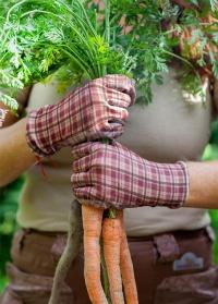 Садовые перчатки с нитрилом Classic Collection GardenGirl RRH02 фото