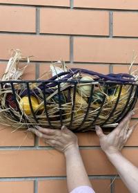 Декоративная настенная металлическая корзина для растений BPH133 Esschert Design фото