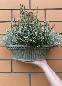 Настенное металлическое кашпо-корзина для цветов AM100 Aged Metal Esschert Design фото