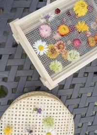Настольная деревянная сушилка цветов и трав FH008 от Esschert Design фото