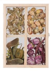 Стеклянная рамка - бокс для гербария ML037 от Esschert Design фото