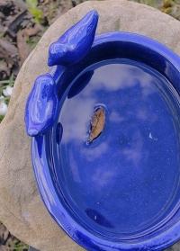 Купальня для птиц из керамики синяя Blue FB404 Esschert Design фото