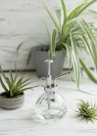 Стеклянный опрыскиватель для комнатных растений Clear TG72 Esschert Design фото