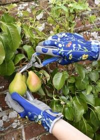 Лучшие садовые ножницы в подарочной упаковке British Meadow Collection Burgon & Ball фото