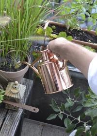 Английская лейка для цветов 1 л. HAWS The Rowley Ripple Copper фото