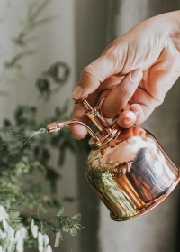 Медный опрыскиватель для цветов английского бренда HAWS Smethwick Spritzer Copper фото